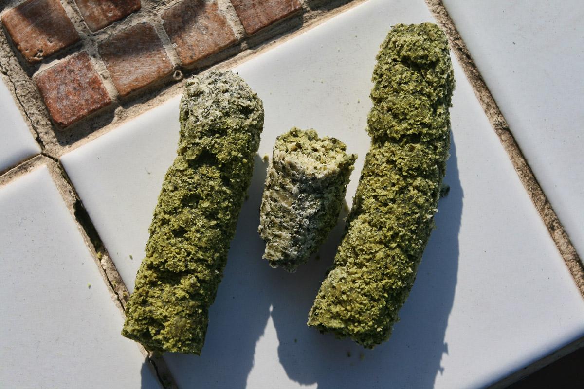 Sušina z dýňových semínek